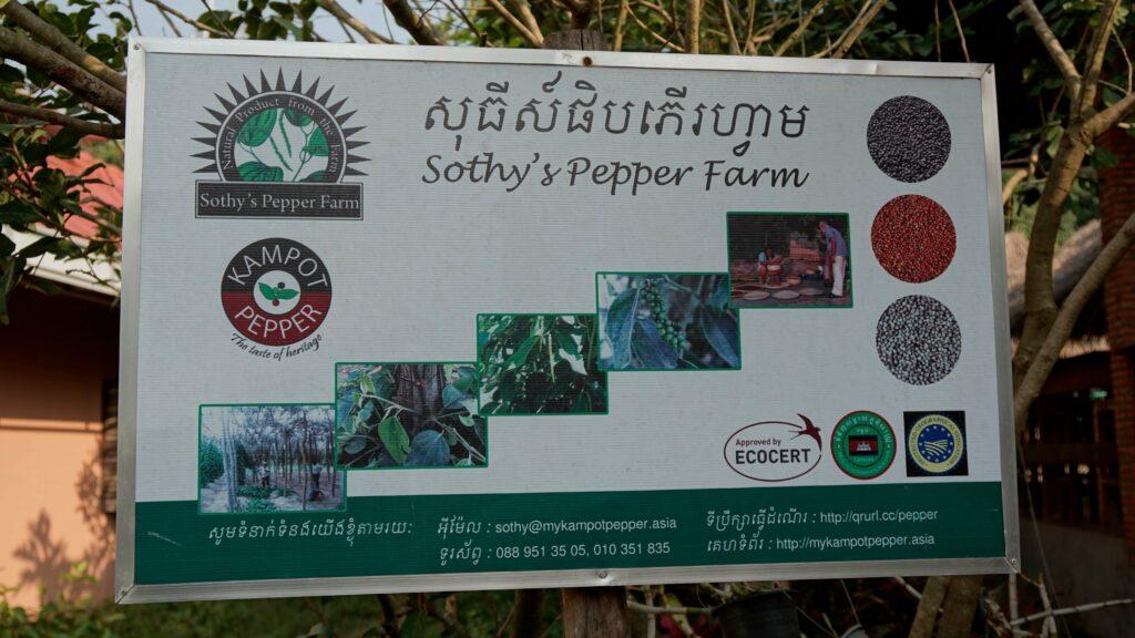 Sothy's Pepper Farm