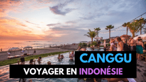 4 Jours à Canggu (Bali) : Activités, Logement, Restaurants