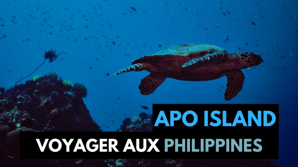 Nager avec les Tortues de Mer à Apo Island aux Philippines !